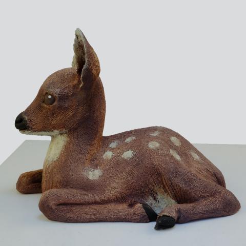 fallow deer fawn