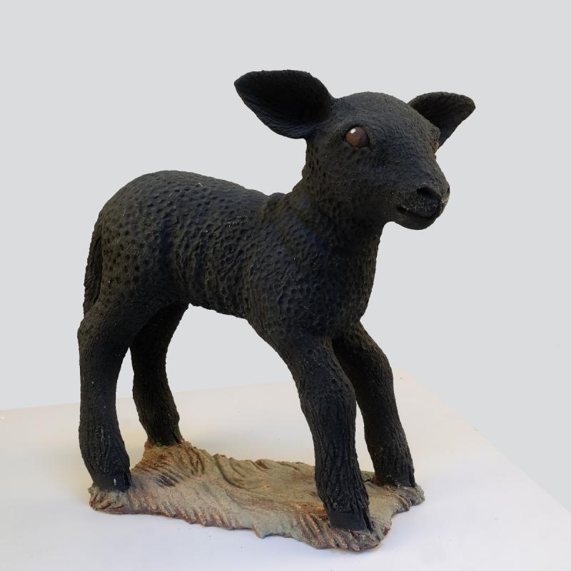 a black lamb