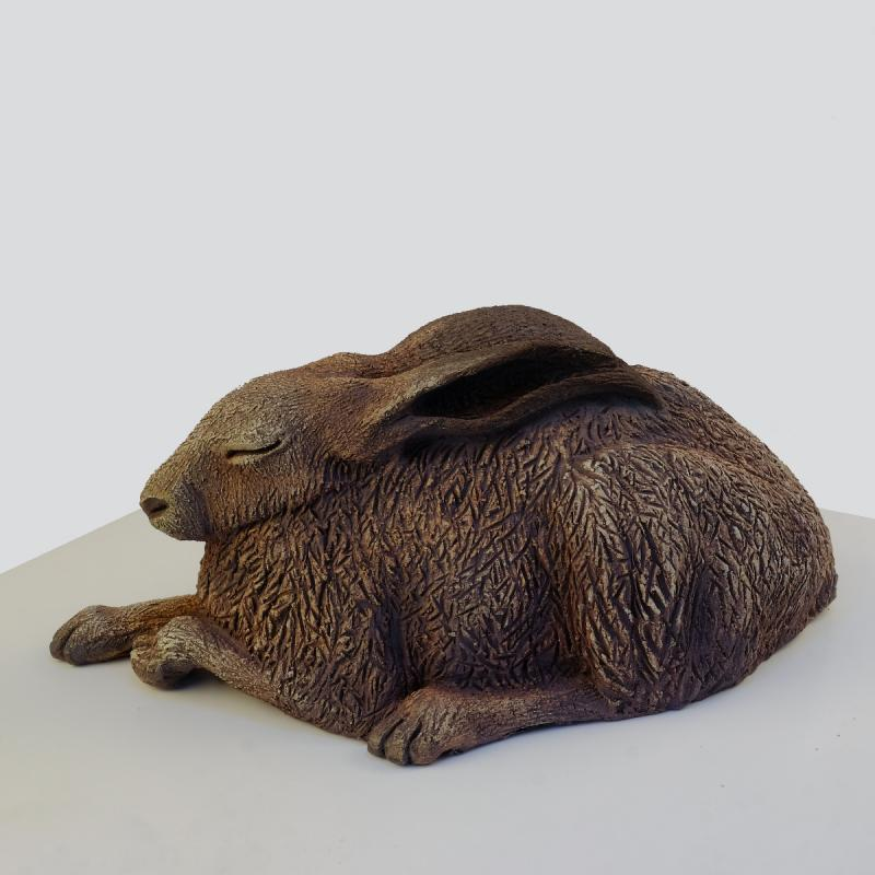 a sleeping hare
