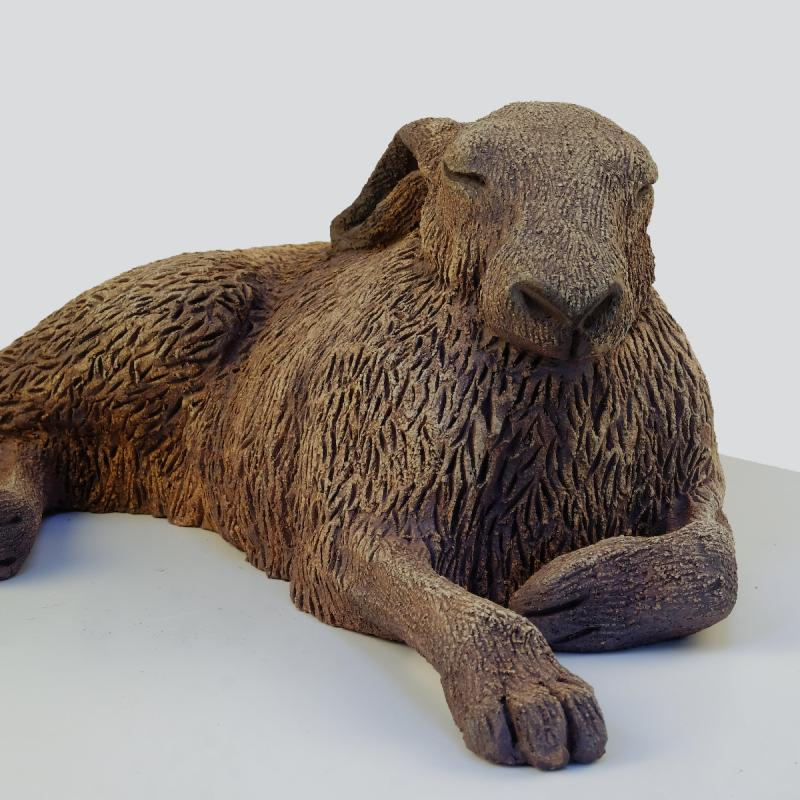 sunbathing hare