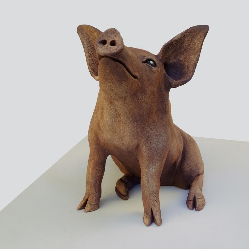 tamworth piglet